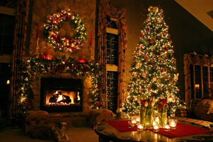 Новогодние елки.